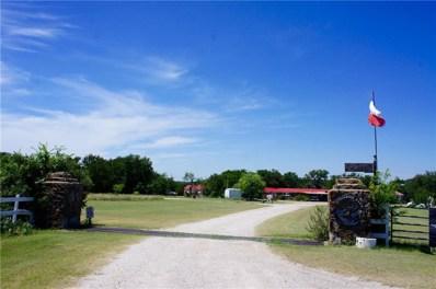 9091 County Road 456, Brownwood, TX 76801 - MLS#: 13634140