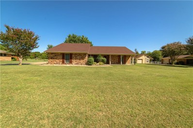 15396 Plum Lane, McKinney, TX 75070 - MLS#: 13691294