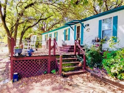248 Breezy Point, Palo Pinto, TX 76484 - MLS#: 13708126