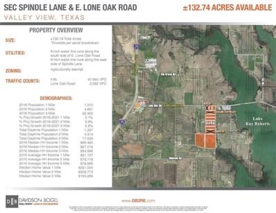 E Lone Oak E, Valley View, TX 76272 - #: 13754820