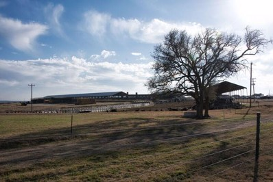 5425 County Road 340, Dublin, TX 76446 - MLS#: 13771303