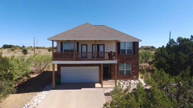 135 Coghill Drive, Possum Kingdom Lake, TX 76449 - #: 13773055