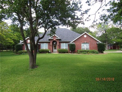 1120 Timber Ridge Drive, Stephenville, TX 76401 - MLS#: 13775966