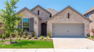 9928 Denali Drive, Oak Point, TX 75068 - #: 13788326