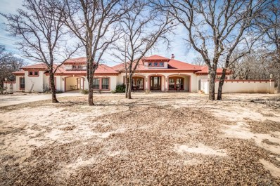117 Redtail Court, Weatherford, TX 76088 - MLS#: 13793284