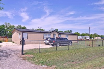 1317 Oregano Lane, Ponder, TX 76259 - #: 13793316