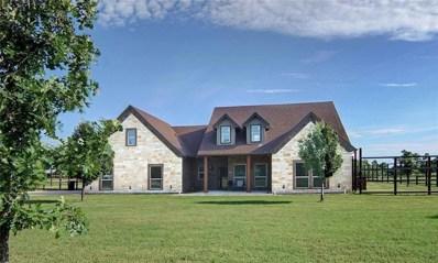 1438 Kite Road, Mineral Wells, TX 76067 - MLS#: 13798235