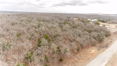 County Road 2254, Valley View, TX 76272 - #: 13799752