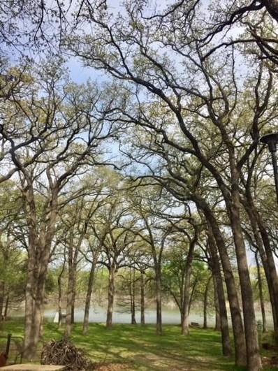 9600 Heron Drive, Fort Worth, TX 76108 - #: 13800154