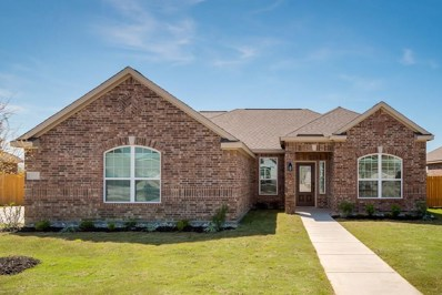 607 Meadow Springs Drive, Glenn Heights, TX 75154 - MLS#: 13812767