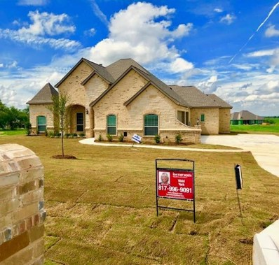 135 Stanford Lane, Springtown, TX 76082 - MLS#: 13817138