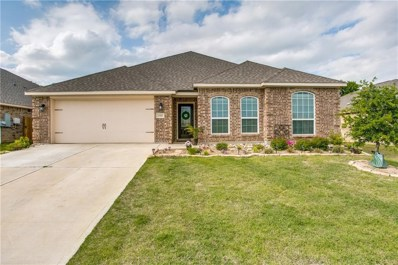 2405 Summer Trail Drive, Denton, TX 76209 - #: 13829304