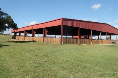 Young Bend Road, Brock, TX 76087 - MLS#: 13835292