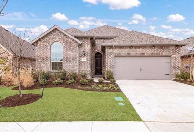 10001 Echo Summit Drive, Oak Point, TX 75068 - #: 13841665