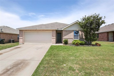 115 Ringneck Drive, Sanger, TX 76266 - #: 13846189
