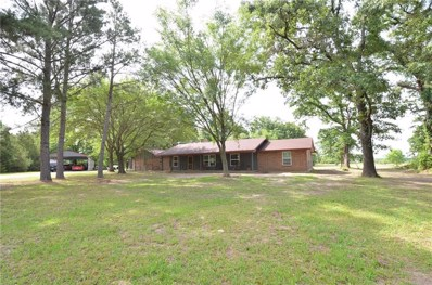 461 Vz County Road 4408, Ben Wheeler, TX 75754 - #: 13851023