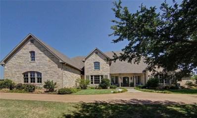 101 Fawn Trail, Graham, TX 76450 - #: 13856853