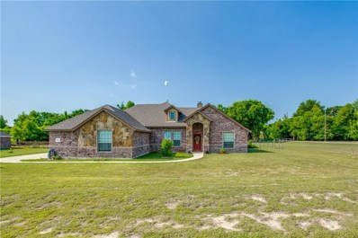 100 Kenya Court, Springtown, TX 76082 - MLS#: 13859632