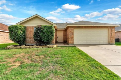 117 Ringneck Drive, Sanger, TX 76266 - #: 13864174