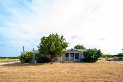 319 County Road 4840, Haslet, TX 76052 - #: 13866933