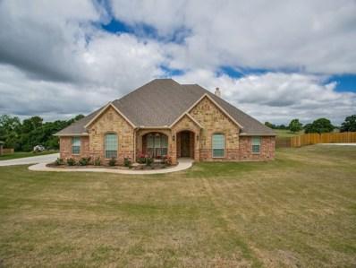 116 Briar Meadows Circle, Azle, TX 76020 - #: 13867940