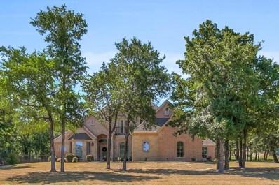 585 Sugartree Drive, Lipan, TX 76462 - #: 13871395
