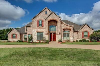 132 Constellation Drive, Cresson, TX 76035 - MLS#: 13877091