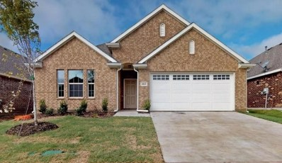 2613 Centurion Road, Glenn Heights, TX 75154 - #: 13877473