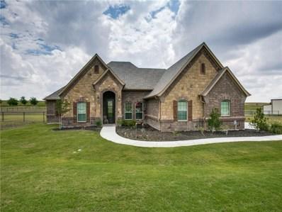 142 Vista Ridge, Decatur, TX 76234 - #: 13890315