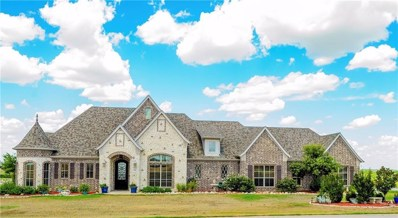 7401 Royal Winchester Dr, Cleburne, TX 76033 - MLS#: 13890977