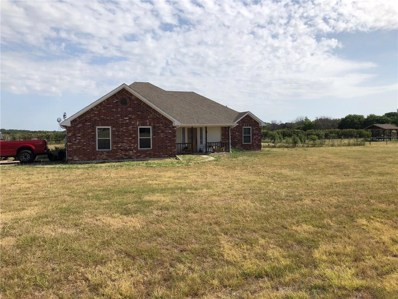 225 Miramar Circle, Weatherford, TX 76085 - MLS#: 13892320