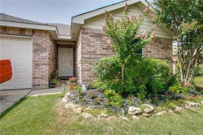136 Pintail Drive, Sanger, TX 76266 - #: 13893290