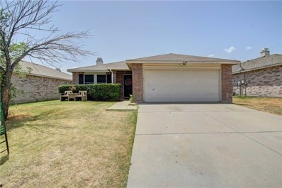 16209 Blanco Lane, Fort Worth, TX 76247 - MLS#: 13894085