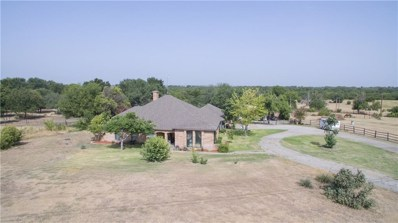115 Woodcrest Street, Weatherford, TX 76087 - #: 13894914