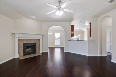 14120 Dream River Trail, Fort Worth, TX 76052 - MLS#: 13894921