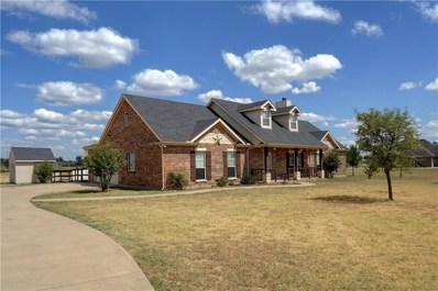 6350 Meadowlands Drive, Krum, TX 76249 - #: 13897225