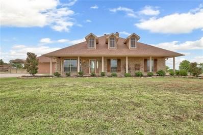 10401 County Road 466, Princeton, TX 75407 - MLS#: 13897395