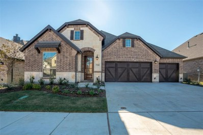 724 Sandbox Street, Little Elm, TX 76227 - MLS#: 13899647