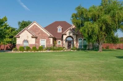 13101 Charlotte Ann Lane, Haslet, TX 76052 - #: 13901111