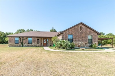 141 Hampton Lane, Springtown, TX 76082 - MLS#: 13902414