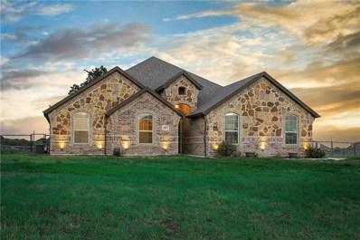 117 Briar Meadows Circle, Azle, TX 76020 - #: 13906033