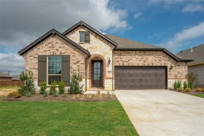 9921 Denali Drive, Oak Point, TX 75068 - #: 13906141
