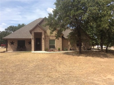 132 Eagle Drive, Lipan, TX 76462 - #: 13907165
