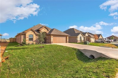 534 Clearwater Place, Granbury, TX 76049 - MLS#: 13908973