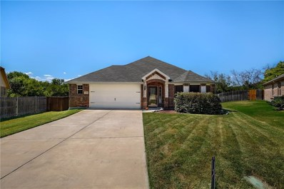 1900 Michelle Creek Drive, Little Elm, TX 75068 - #: 13909918