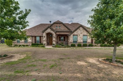 3821 Black Champ Road, Midlothian, TX 76065 - #: 13911882