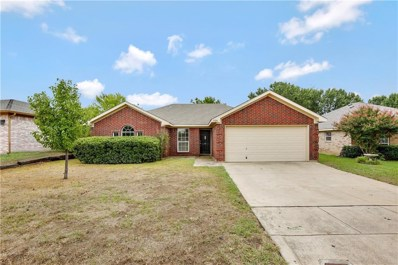3920 Periwinkle Drive, Fort Worth, TX 76137 - MLS#: 13913382