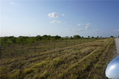 7020 Doyle Road, Krum, TX 76249 - #: 13914236