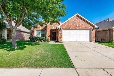 815 Creekside Drive, Little Elm, TX 75068 - #: 13914274