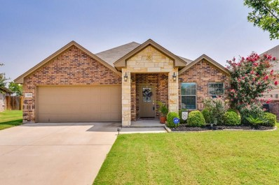 12133 Hunters Crossing Lane, Fort Worth, TX 76028 - MLS#: 13916806